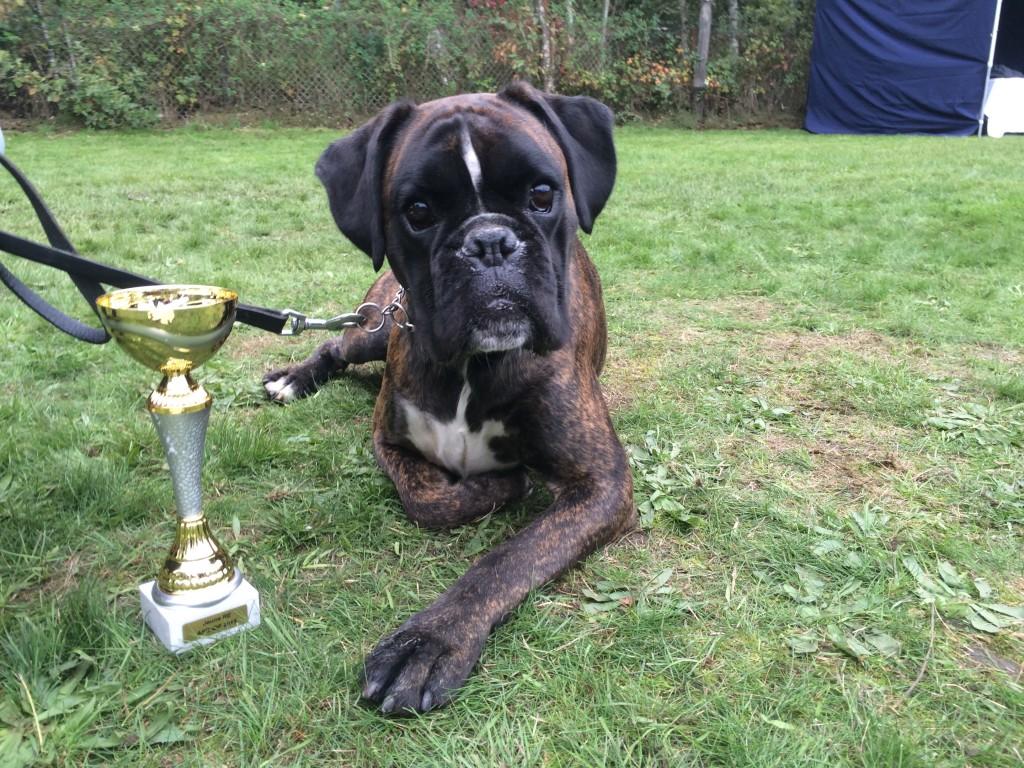 Jax champion